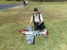 Stupendo P-51 di Marco